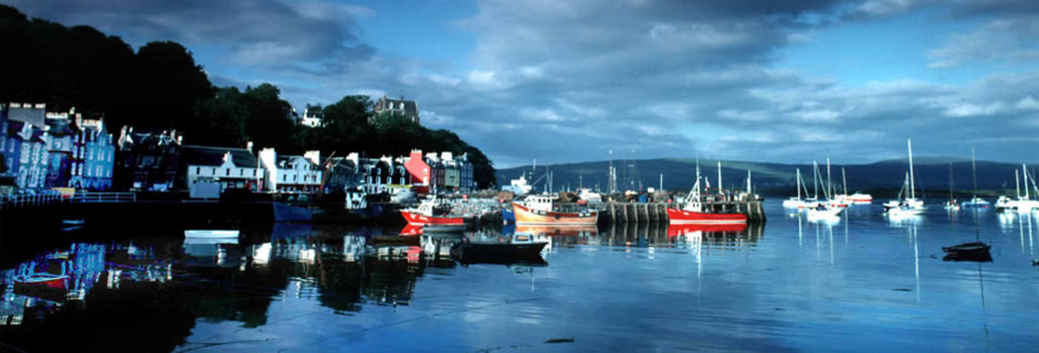 Stunning view of Tobermory bay